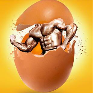 با ارزش غذایی تخم مرغ آشنا شوید